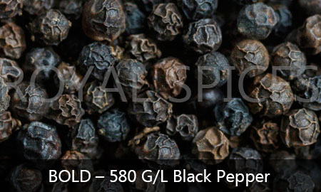 Bold quality 580 gram liter 5mm berry size